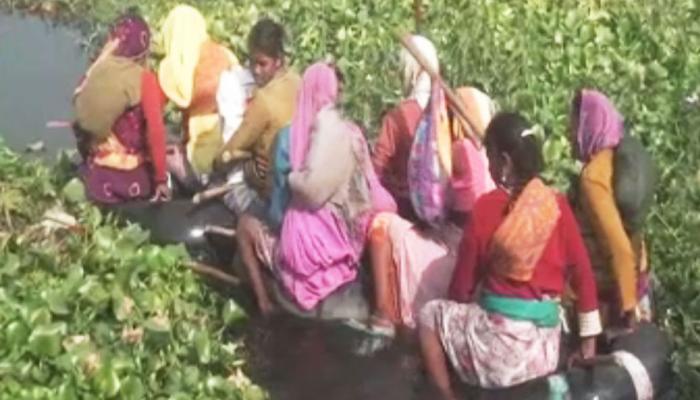 ये महिलाएं रोजाना मगरमच्छों से भरे पानी में पूरा करती हैं 800 मीटर लंबा 'मौत का सफर'!