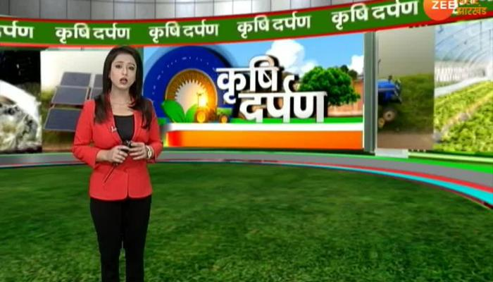 Krishi Darpan special program for farmers special story on apiculture
