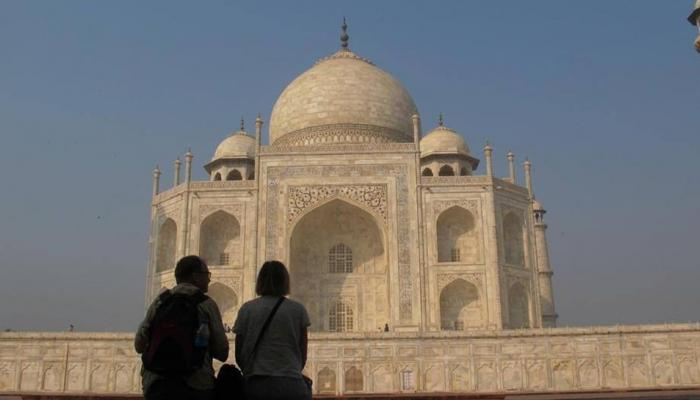 Terror of monkeys in Taj Mahal, two foreign tourists injured