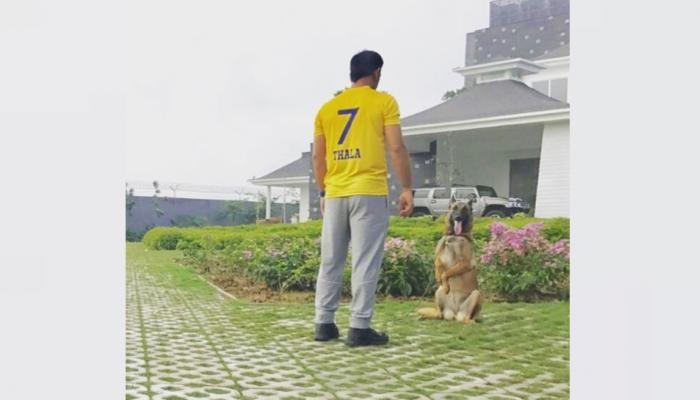 MS Dhoni 7 Acre Farmhouse Kailashpati in Ranchi, Know about all