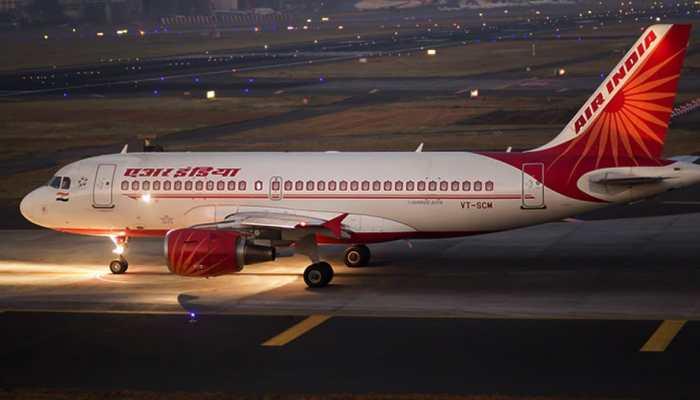 Image result for एयर इंडिया ने कहा: हमने विमान को जांचा, कोई खटमल नहीं मिला