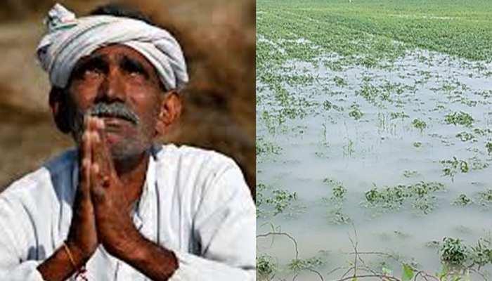 राजस्थान: भारी बारिश ने फसलों को किया बर्बाद, किसानों को मुआवजे की आस