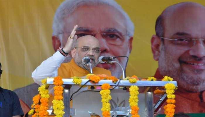 देशभर में घुसपैठियों को चुन-चुनकर निकालने का काम करने वाली है बीजेपी सरकार : शाह