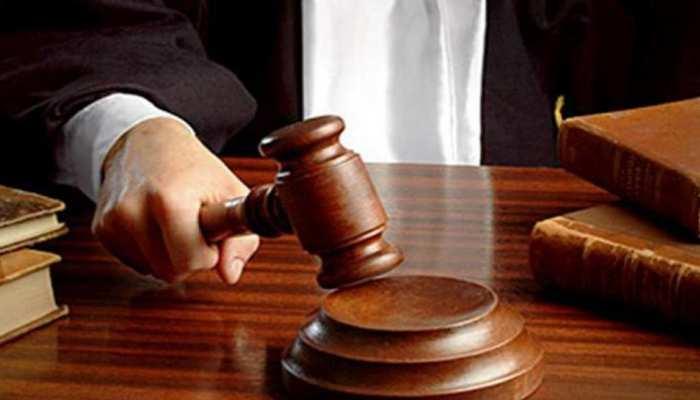 शेरों की मौत का मामला: अदालत ने कहा, टीकाकरण पर विशेषज्ञ लें फैसला