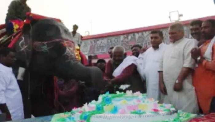 बिहार : पशु प्रेमी ने धूमधाम से मनाया हाथी का जन्मदिन, विधानसभा अध्यक्ष भी हुए शामिल
