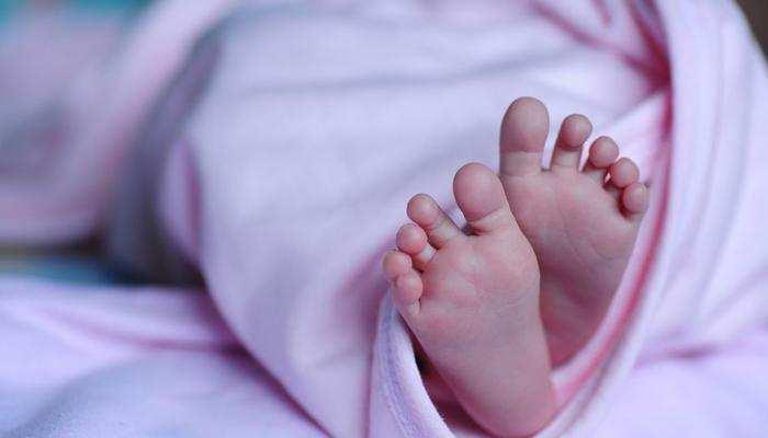 सहरसा: अस्पताल परिसर में नवजात शिशु के शव को निवाला बनाता रहा सुअर, उठ रहे सवाल