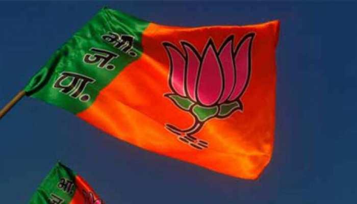 छत्तीसगढ़ चुनाव 2018: जशपुर में भाजपा को हराना नहीं है आसान, ऐसा है चुनावी इतिहास